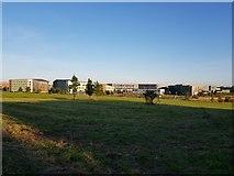 SE6350 : Towards Goodricke College by DS Pugh