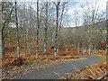 NH8306 : Aviemore - Kincraig Speyside Way Extension by valenta