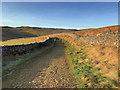 SD6975 : Twisleton Lane by David Dixon