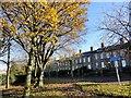 NZ2562 : Walker Terrace, Gateshead by Robert Graham
