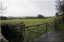 SK2572 : Field near Baslow by Bill Boaden