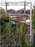 SJ8934 : Railway at Stone Station in Staffordshire by Roger  Kidd