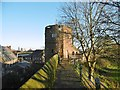 SJ4066 : Chester, tower by Mike Faherty