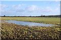 SU2888 : Flooded Footpath by Des Blenkinsopp