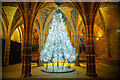 SJ4066 : A Christmas Tree for Life in Chester Cathedral by Jeff Buck