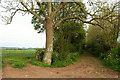ST4432 : Drove Junction near Henley by Derek Harper