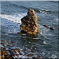 NT9660 : Maiden's Stone sea stack by Walter Baxter