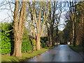 TQ3941 : Swissland Hill, Dormans Park near East Grinstead by Malc McDonald