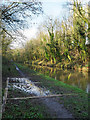 SJ7825 : Canal with path drainage feature by Trevor Littlewood