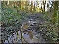 SE1037 : Muddy path in Cottingley Wood by Stephen Craven