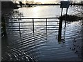 TL3071 : Flooding in St Ives, Winter 2019 - Photo 13/26 by Richard Humphrey