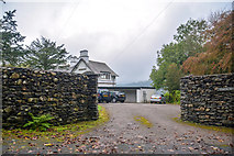 SD4095 : Windermere : Yews by Lewis Clarke
