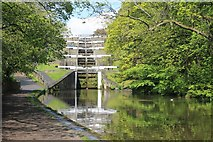 SE1039 : Five-rise locks at Bingley by Dave Pickersgill