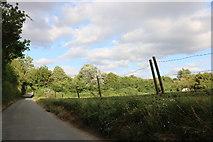 TL4037 : Bogmoor Road, Shaftenhoe End by David Howard