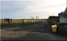 NT4999 : Admiralty Lane, Elie by Bill Kasman
