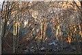 NT2540 : Face of Venlaw Quarry, Peebles by Jim Barton