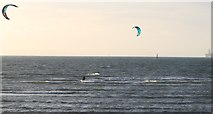 NT4999 : Windsurfers in Elie Harbour by Bill Kasman