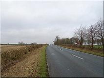 SE9746 : B1248 towards Bainton by JThomas