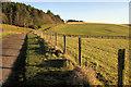 NT9616 : Lane to Hartside by Derek Harper