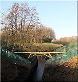 SJ8093 : Chorlton Brook by habiloid