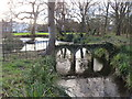 TQ2668 : Morden Hall Park by Malc McDonald