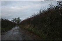 ST8871 : Lane in Easton by David Howard