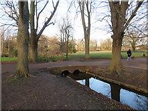 TQ2668 : Bridge over a drainage channel, Morden Hall Park by Malc McDonald