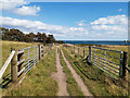 SZ0382 : Footpath towards the rear of South Beach Studland by Phil Champion