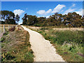 SZ0382 : Permissive path toward Fort Henry and Middle Beach, Studland by Phil Champion