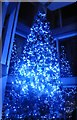 TQ3280 : Christmas tree at The Shard by Marathon