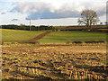 NZ3020 : Farmland south of East Ketton (2) by Mike Quinn