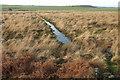 NU2521 : Drainage channel below Dunstanburgh Castle by Derek Harper
