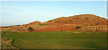 NU2422 : Dunes, Dunstanburgh Castle Golf Course by Derek Harper