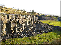 NY9539 : Harrowbank Quarry (disused) by Mike Quinn