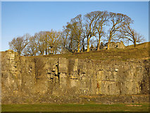 NY9539 : Harrowbank Quarry (disused) below High Farm (2) by Mike Quinn