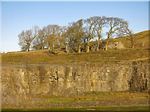 NY9539 : Harrowbank Quarry (disused) below High Farm (4) by Mike Quinn