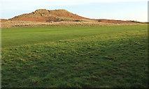 NU2422 : Sand dune, Embleton Bay by Derek Harper