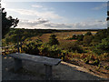 SY9888 : View from Shipstal Hill, RSPB Arne nature reserve by Phil Champion
