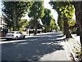 TQ1681 : Ealing avenues [2] by Michael Dibb