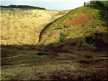 NT8912 : Dry Slack from Whiteburnshank by Andrew Curtis