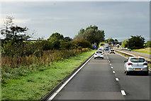 NS3727 : A77 Northbound near Monkton by David Dixon