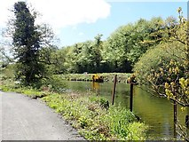 J0923 : The Newry Canal flowing parallel with the Newry Greenway and the B79 (Fathom Line) road by Eric Jones