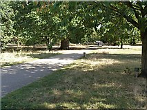 TQ1780 : Ealing features [9] by Michael Dibb