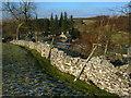 NY7203 : Limestone wall by John H Darch