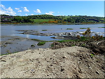 J0922 : Mud flats in the Newry River by Eric Jones