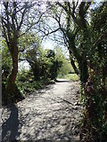 J0922 : View SSE along the Newry Greenway by Eric Jones