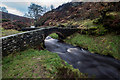 SK0173 : Packhorse Bridge, Goyt Valley by Brian Deegan
