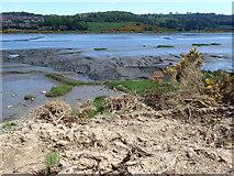 J0922 : Mud, Glorious Mud by Eric Jones