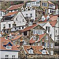 NZ8016 : Runswick Bay by Mick Garratt