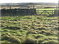 NT8469 : Field gate on Dowlaw Road by M J Richardson